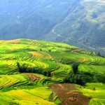 Du lịch Sapa – Hàm Rồng – Cát Cát (2 ngày 3 đêm) từ Hà Nội
