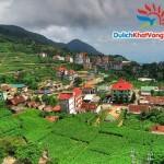 Du lịch Tam Đảo 1 ngày từ Hà Nội giá rẻ